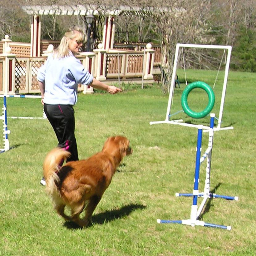 Dog Jump 2