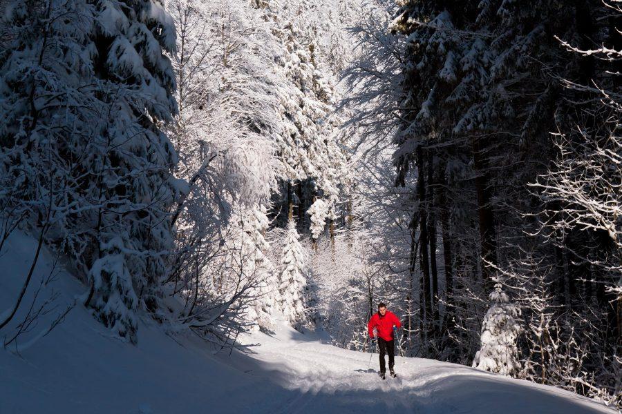 a man skiing through a forest